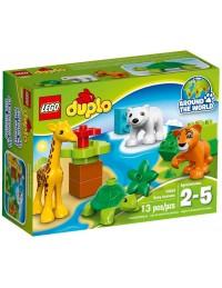 LEGO Duplo 10801 Zwierzątka 2016
